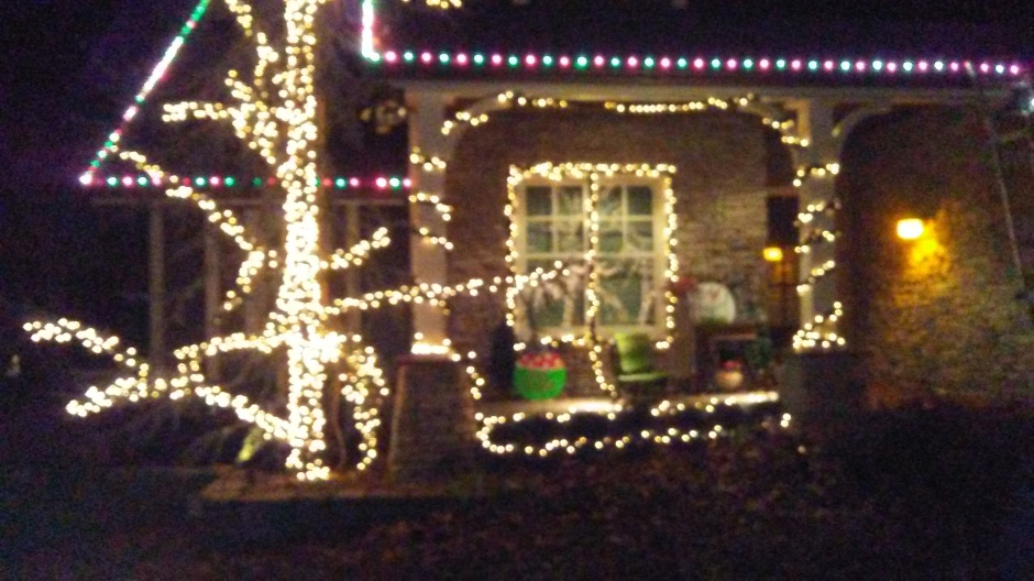category holiday lighting service